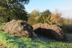 mulch piles