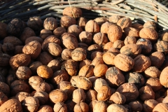 walnuts_basket