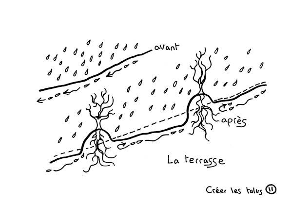 redonner-vie-a-la-terre13