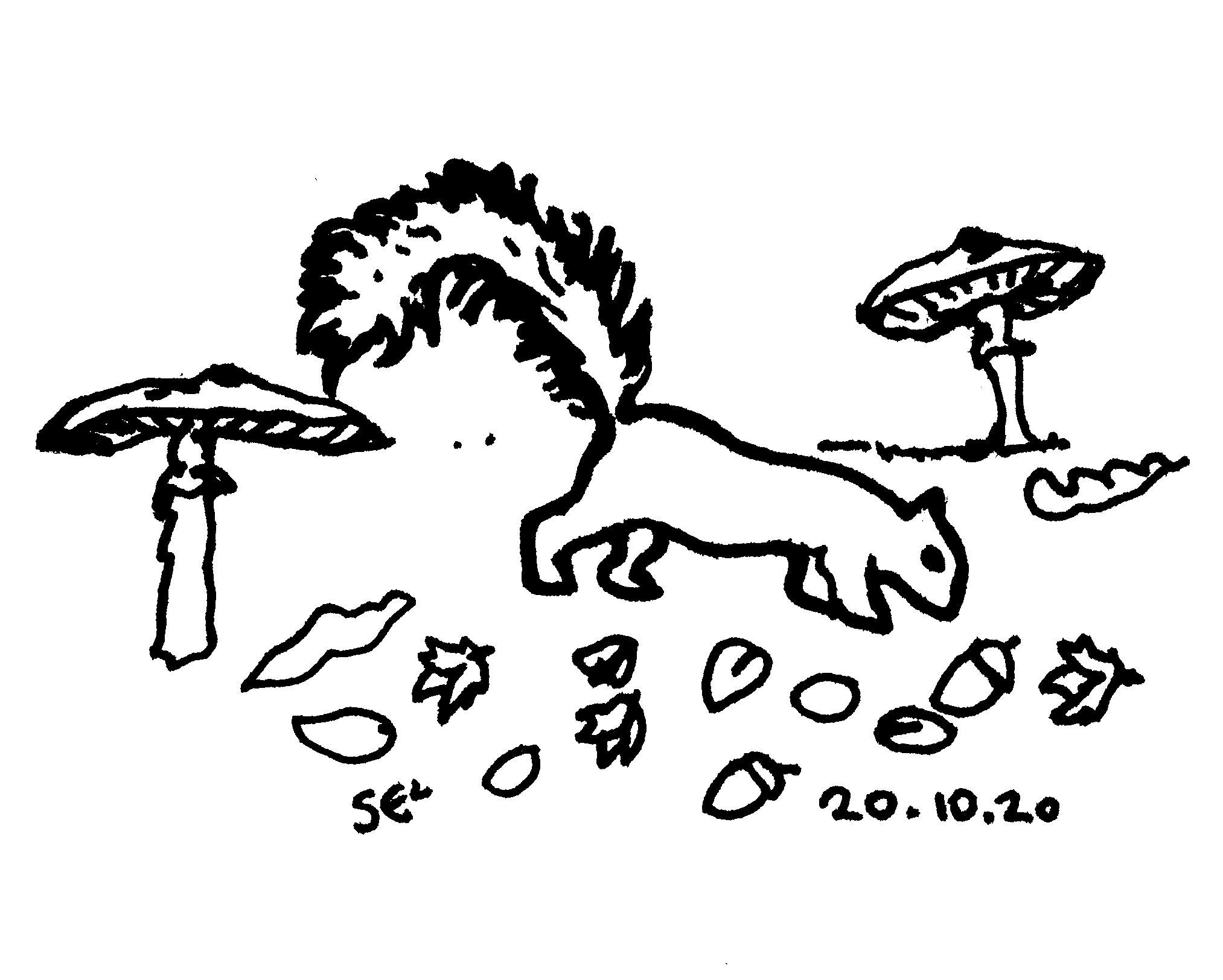 20_10_20040