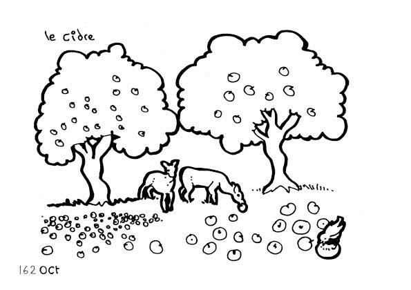 une-annee-avec-la-terre_164