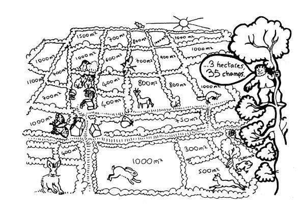une-annee-avec-la-terre1-215