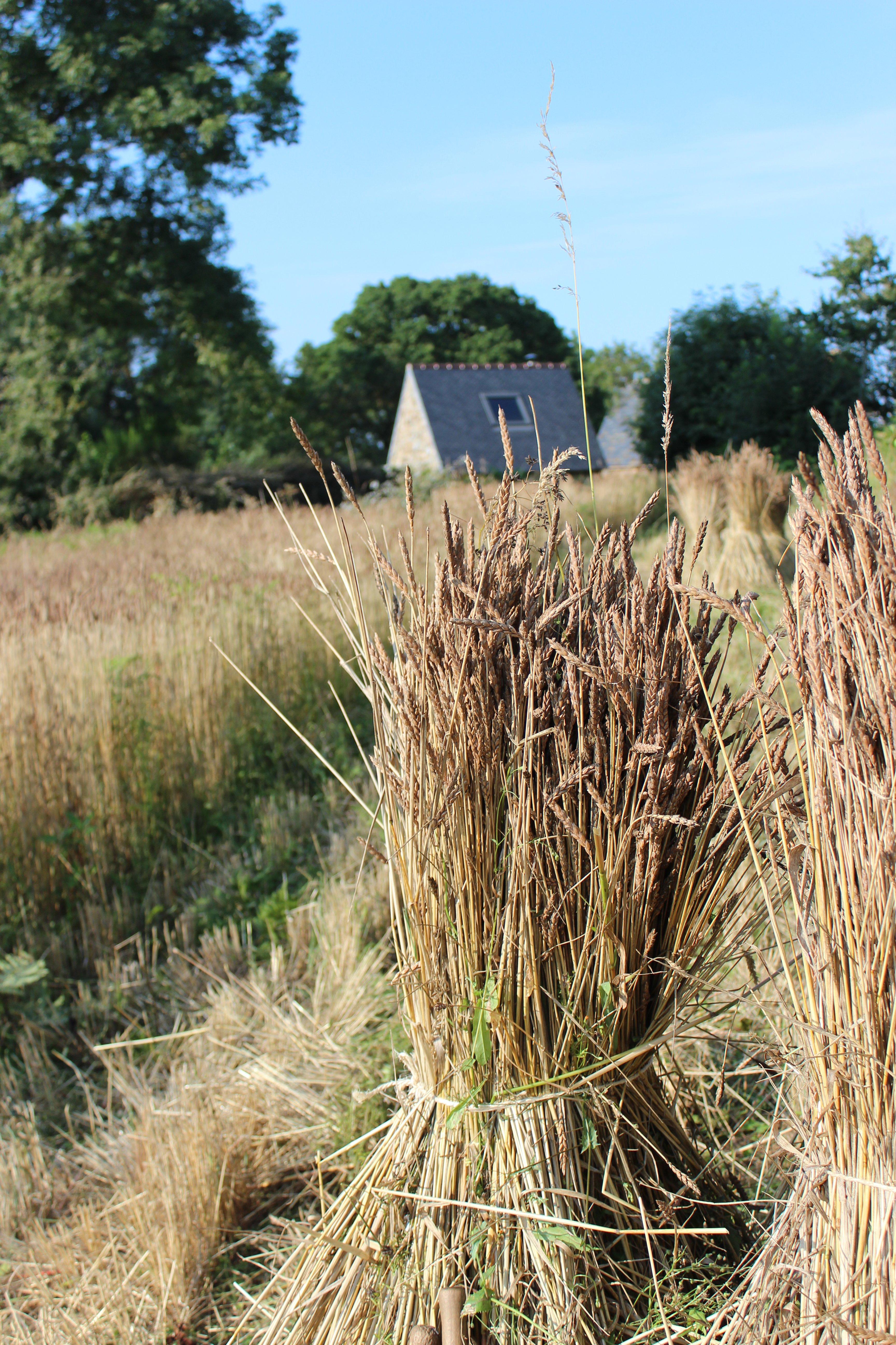 epautre harvest_house