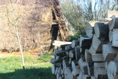 wood_thatch shed2
