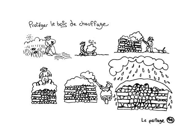 redonner-vie-a-la-terre101