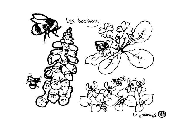 redonner-vie-a-la-terre141