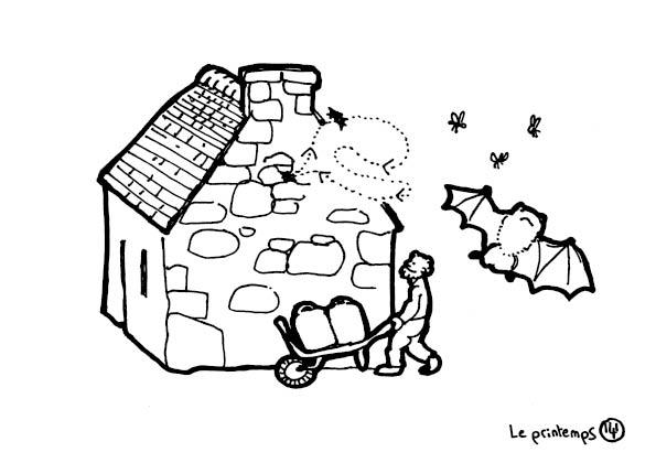 redonner-vie-a-la-terre143