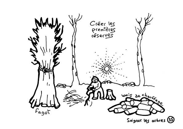 redonner-vie-a-la-terre37