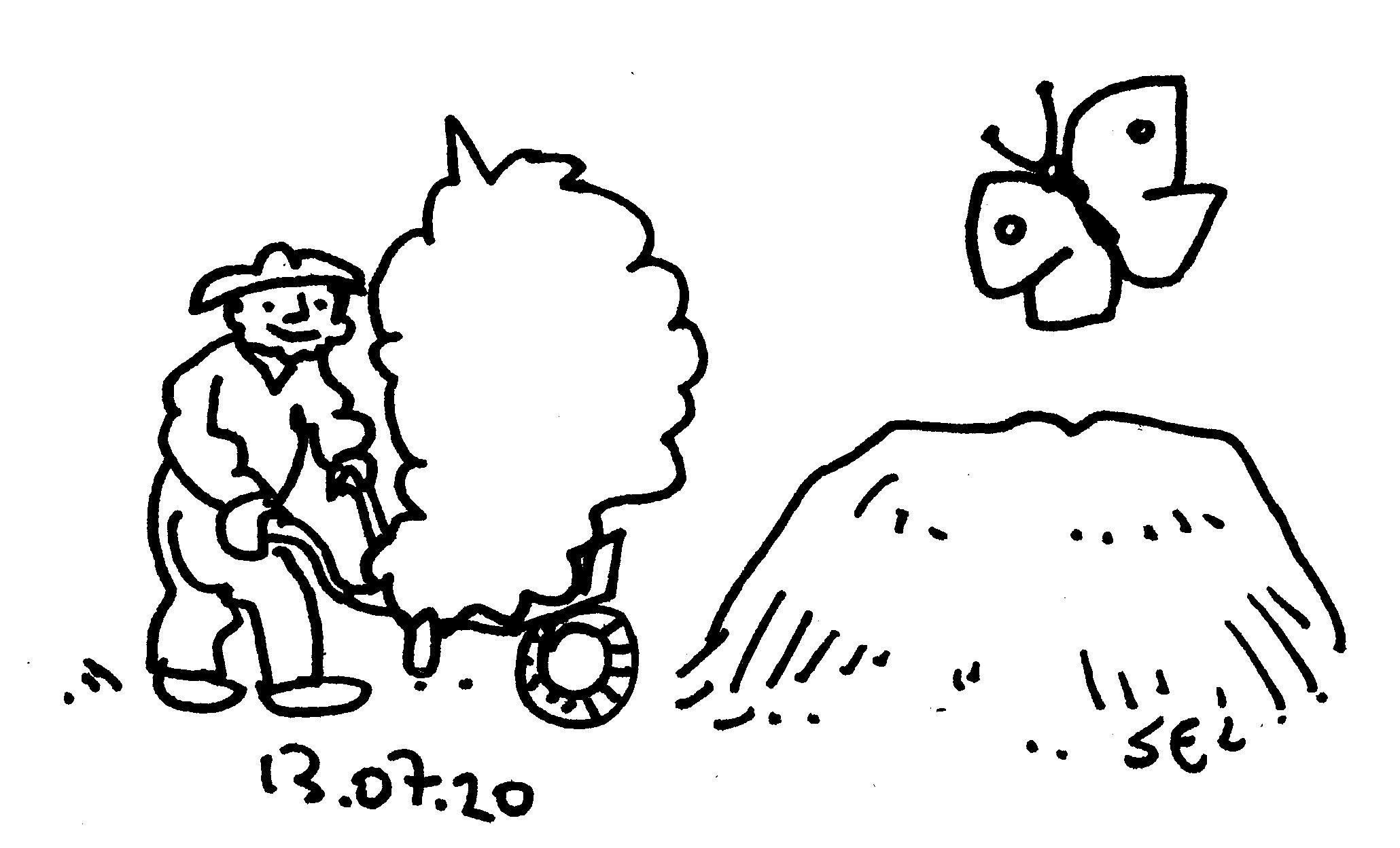 13_07_20071