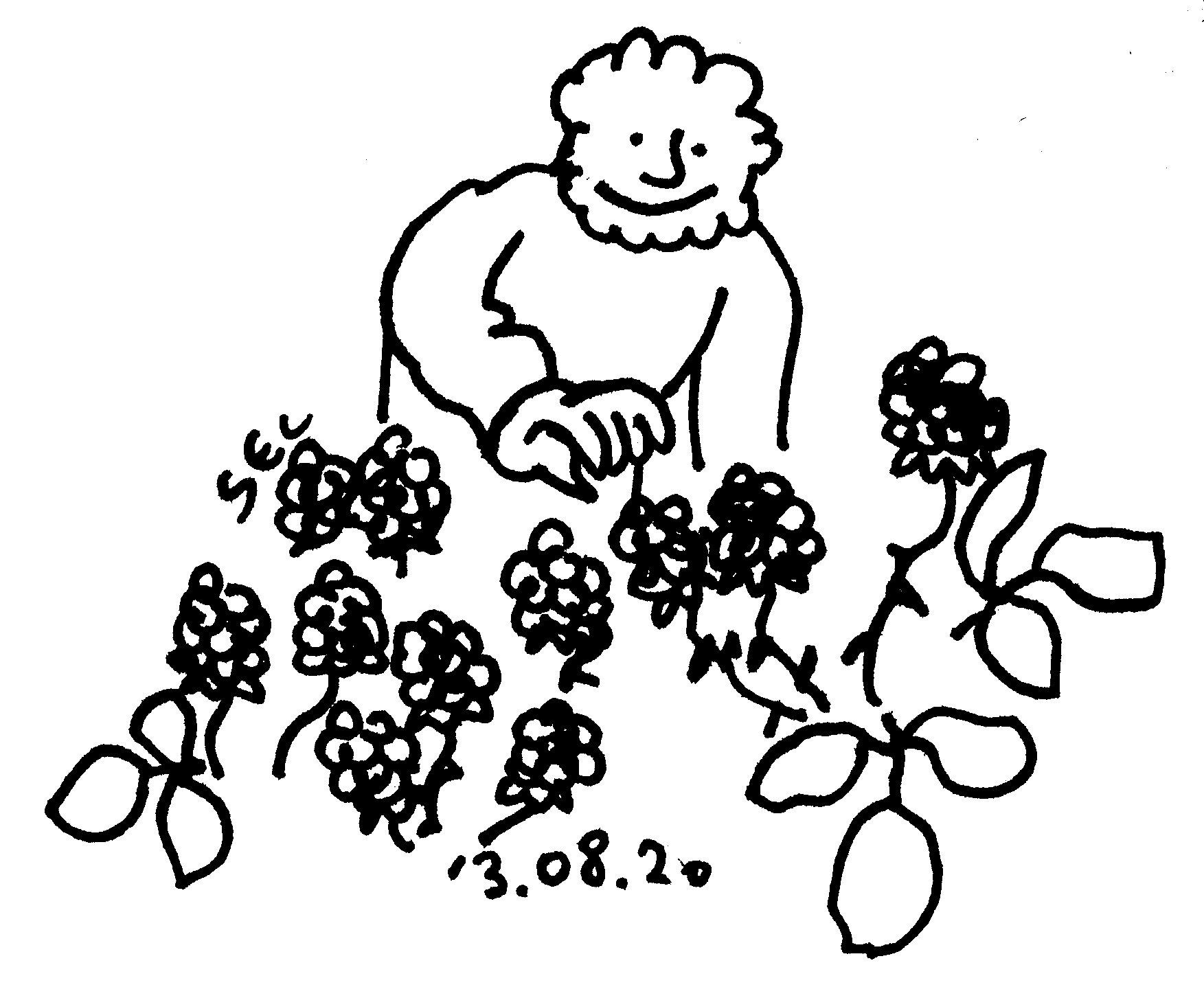 13_08_20_121