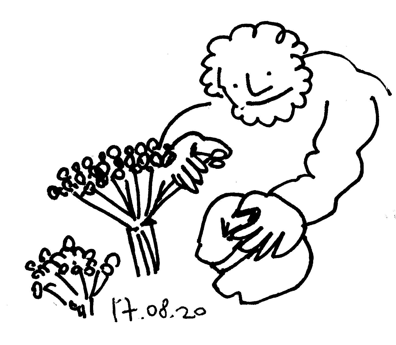 17_08_20_124