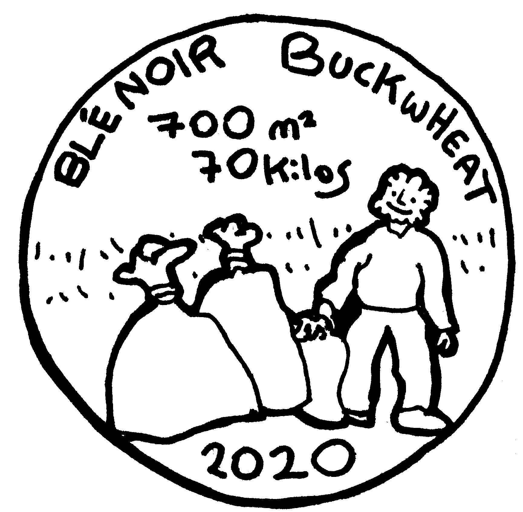 buckwheat-crop062