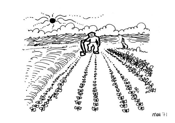 une-annee-avec-la-terre_73