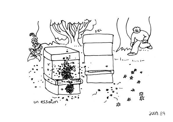 une-annee-avec-la-terre_91